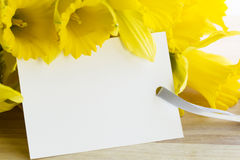 Spring Celebration Greeting Royalty Free Stock Image