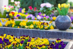 Spring in the cemetery Stock Photo