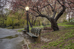 Spring in Central Park, New York City Royalty Free Stock Photos