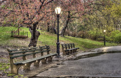 Spring in Central Park, New York City Stock Photography
