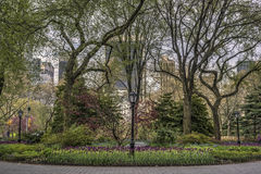 Spring in Central Park, New York City Royalty Free Stock Images
