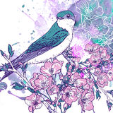 Spring cherry background with birds stock illustration