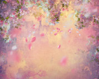Spring Cherry Blossom Painting Stock Image
