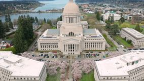 Spring Cherry Blossoms at the State Capital Building in Olympia Washington. Aerial Perspective Over Spring Cherry Blossoms at the Washington State Capital stock video footage