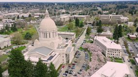 Spring Cherry Blossoms at the State Capital Building in Olympia Washington. Aerial Perspective Over Spring Cherry Blossoms at the Washington State Capital stock footage