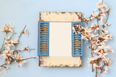 spring cherry blossoms tree and blank photo frame Royalty Free Stock Images