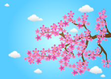 Spring Cherry Flowers Vector Royalty Free Stock Image