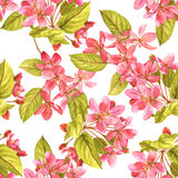 Spring cherry tree blossom seamless pattern stock photo