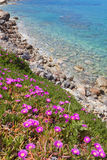 Spring in Chersonissos Stock Photos