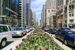 Spring in Chicago Stock Photo