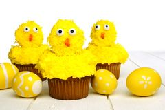 Spring chick cupcakes on white wood Royalty Free Stock Image