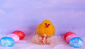 Baby chick one yellow in the middle of six Easter eggs. Spring chick yellow in nest with blue sky background. In Vertical format sitting in the middle of six Royalty Free Stock Photo