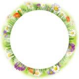Spring circle Stock Photo