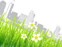 Spring in the city, flowers Royalty Free Stock Photography
