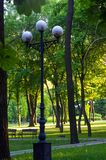 Spring city Park. Lampposts in spring city Park - blooming flower and trees, bright green grass, sunlight stock photo