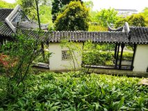 Spring in classical Suzhou garden, China Royalty Free Stock Photography