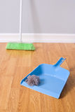 Spring Cleaning. Sweeping large dust bunny on a hardwood floor Stock Photo