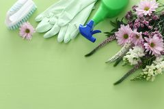 Spring cleaning concept with supplies over pastel green wooden background. Top view, flat lay royalty free stock photography