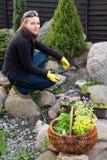 Spring cleaning dans le jardin Images libres de droits
