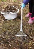 Spring cleaning in einem Garten Lizenzfreies Stockbild