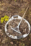 Spring cleaning in einem Garten Stockfoto