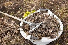 Spring cleaning em uma horta Imagens de Stock