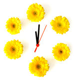Spring clock Stock Images