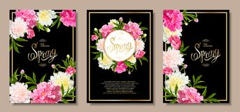 Spring collection backgrounds with peones. Set of three floral backgrounds with blooming pink and light yellow peonies, buds, green leaves. Inscription Spring Royalty Free Stock Image