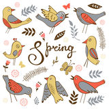 Spring collection with birds flowers and twigs Stock Image