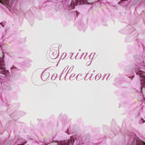 Spring Collection Fahion theme with  flowers Royalty Free Stock Image