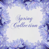 Spring Collection Fahion theme with  flowers Royalty Free Stock Photo
