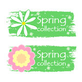 Spring collection with flowers signs, green drawn labels Stock Photos
