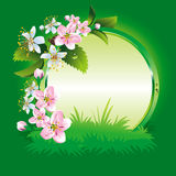 Spring. Collection of four seasons. Vector. Royalty Free Stock Images