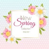Spring shopping sale banner template daisy flower. Spring collection promo sale banner flyer poster template advertising marketing shopping. Square border frame Royalty Free Stock Photos