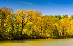 Spring color along Lake Roland at Robert E. Lee Memorial Park in Royalty Free Stock Images
