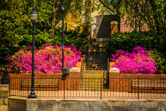 Spring color along the Riverfront Canal Walk in Richmond, Virgin Stock Photography