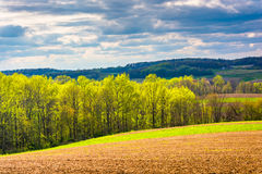 Spring color in rural York County, Pennsylvania. Royalty Free Stock Image