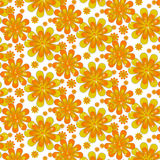 Spring colorful flower background. Beautiful spring background with yellow flowers. Sample text Royalty Free Stock Images