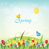 Spring. Colorful flowers and butterfly  spring illustration Royalty Free Stock Image