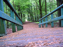 Spring Colors. Bridge in Amsterdam Forest Stock Photos