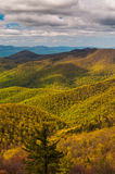 Spring colors in the Appalachian Mountains  in Shenandoah National Park, Virginia. Stock Image