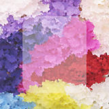 Spring Colors Royalty Free Stock Photo