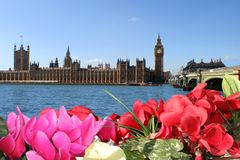 Spring colors of London. Flowers, sky, Parliament Royalty Free Stock Image