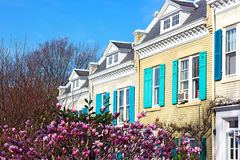 Spring colors of residential street in Washington DC, USA. Stock Image