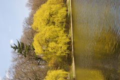 Spring Colours in High Park Stock Photos