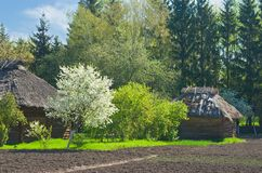 Spring come to an old Ukranian farm Royalty Free Stock Photography
