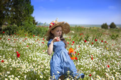Spring comes. Portrait of beauty little girl in a meadow with wild flowers stock photography