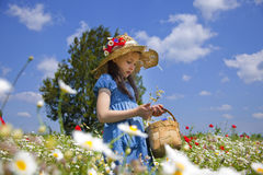 Spring comes. Portrait of beauty little girl in a meadow with wild flowers stock images