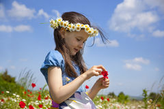 Spring comes. Portrait of beauty little girl in a meadow with wild flowers stock image