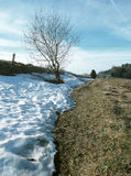 Spring is coming. Spring scenery with snow-grass boundary, small grove, Milicin village, Czech Republic Royalty Free Stock Photos